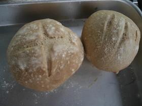 基本のライ麦パン【簡単手ごね】