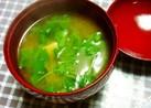 ♪簡単♪*貝われ菜のお味噌汁*