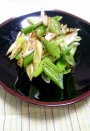 超簡単☆長ネギの黒胡椒炒めの写真