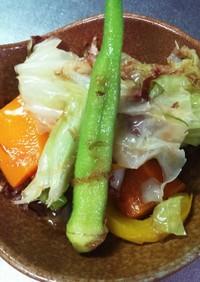 ひんやり♪今が旬の夏野菜4色彩のおひたし