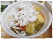 離乳食後期・しらすと野菜蒸しの写真