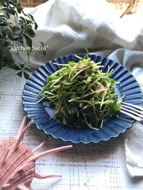 シャキ!ぷちっ!豆苗とツナの胡麻サラダ