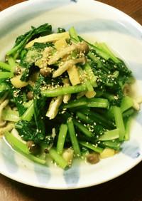 時短!小松菜の炒め浸し