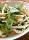 もやし&パクチーでヴェトナム風サラダ