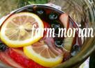 農園レシピ♪フルーツサワードリンク