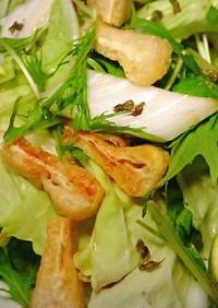 レタサイのサラダ