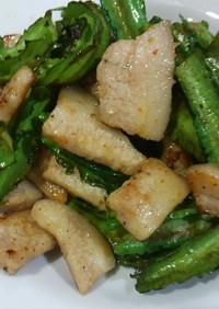 四角豆豚バラべっぴん玉ねぎスパイス炒め