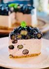 超簡単プロの味★Mixベリーチーズケーキ