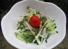 青紫蘇大好き大根サラダ