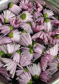 食用菊の基本の使い方と保存方法