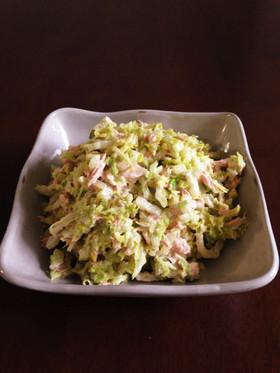 簡単すぎ!白菜とツナのサラダ