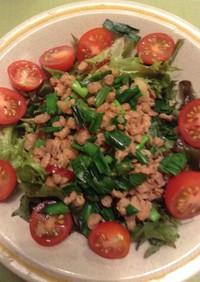 野菜が進む!大豆肉のサラダ