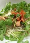 香菜・秋刀魚・キムチの素麺チャンプルー