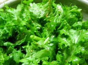 わさび菜のシンプルサラダ