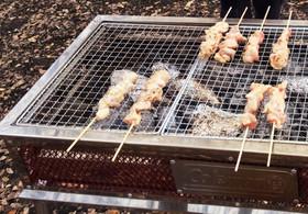 BBQにオススメ!味付け塩麹だけ、焼き鳥