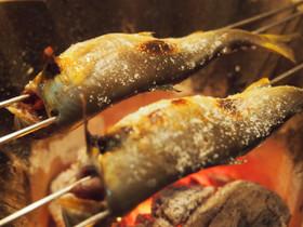 炭火でこんがり 高津川 天然鮎の塩焼き