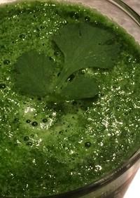 小松菜とパクチーのスムージー