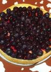 ブルーベリーチーズケーキ♪簡単タルト生地