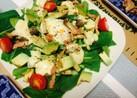 小松菜とアボカドのシーザーサラダ