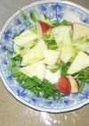 林檎、豆苗、玉ねぎ、白菜サラダ