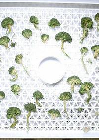 野菜乾燥機で作る干しブロッコリー