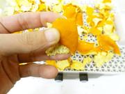 食品乾燥機でみかんの皮を乾燥の写真
