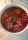 борщ(ボルシチ)/ロシアのスープ