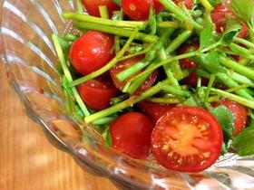 免疫UP☆セリとトマトのゆず胡椒サラダ