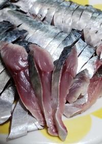 《簡単》生鯖で手作りしめ鯖