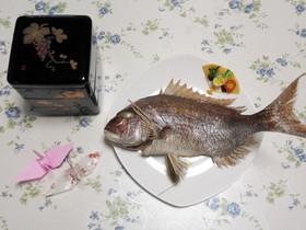 祝 鯛の塩焼き