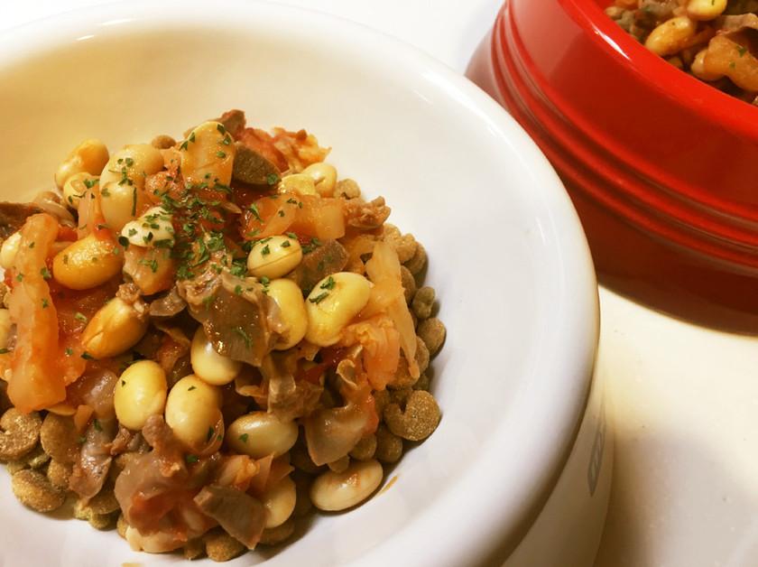 犬ご飯☆砂肝のトマト煮込み