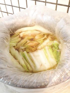 災害非常食 豚肉と白菜のミルフィーユ鍋