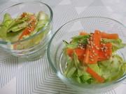 春野菜の簡単浅漬けの写真