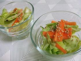 春野菜の簡単浅漬け