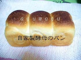 **ヨーグルト酵母で作った♥パン記録**