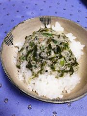 祝検索1位☆生めかぶと自然薯のとろろご飯の写真