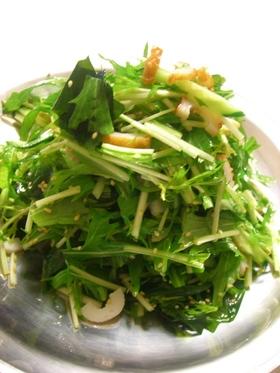 簡単!切るだけ!水菜の韓国風サラダ
