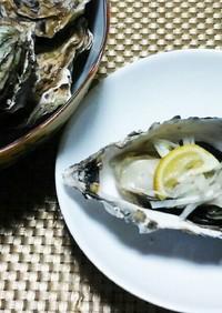 圧力鍋で♪殻つき牡蠣のぷりぷり蒸し牡蠣