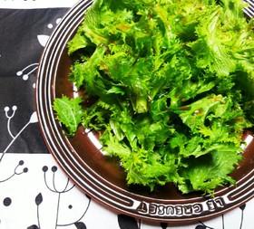 簡単☆わさび菜サラダ