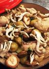 鶏肉とジャガイモの煮込み