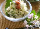 簡単☆大葉と胡瓜で爽やか夏のポテトサラダ