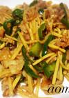 中華の王道★豚肉で青椒肉絲
