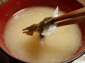 スイバと蓮根の味噌汁・食べてビックリ!