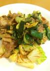 焼肉のたれで!葉玉ねぎと豚肉のピリ辛炒め