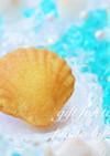 レモンが香るマドレーヌ〜砂浜の貝殻〜
