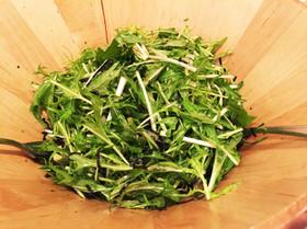 簡単!水菜と海苔の韓国風サラダ