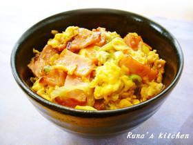 1人飯お弁当にも♬とろ~り焼豚丼
