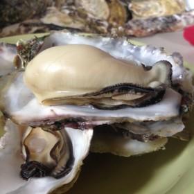 超簡単に牡蠣をぷっくりと圧力鍋で蒸す