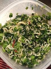 しらすのうまみ栄養たっぷり♪常備菜の写真