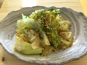 キャベツの超簡単 温野菜サラダ